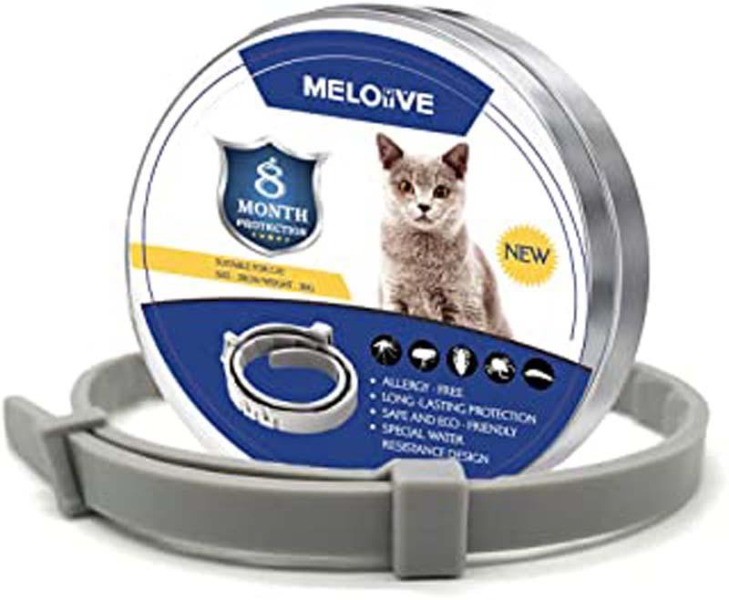 ᐅ Le meilleur collier anti-puces pour chat en 2020 !