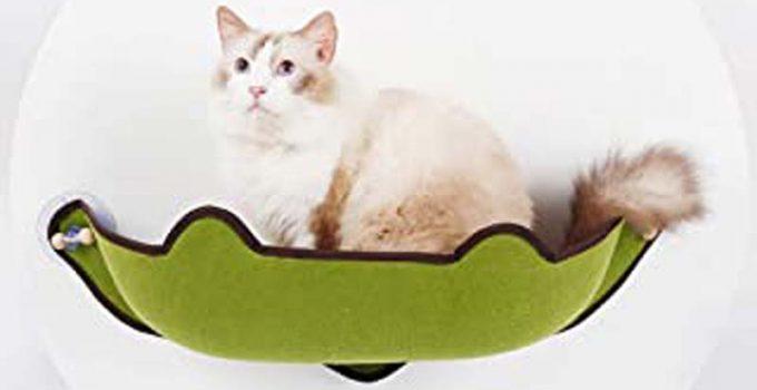 meilleur siège de fenêtre pour chat