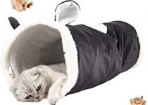 meilleur tunnel pour chat